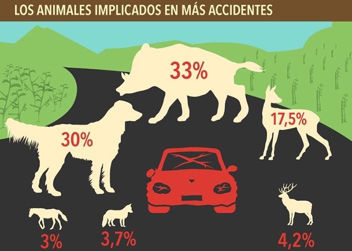 Animales implicados en más accidentes