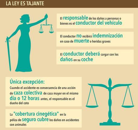 La ley es tajante